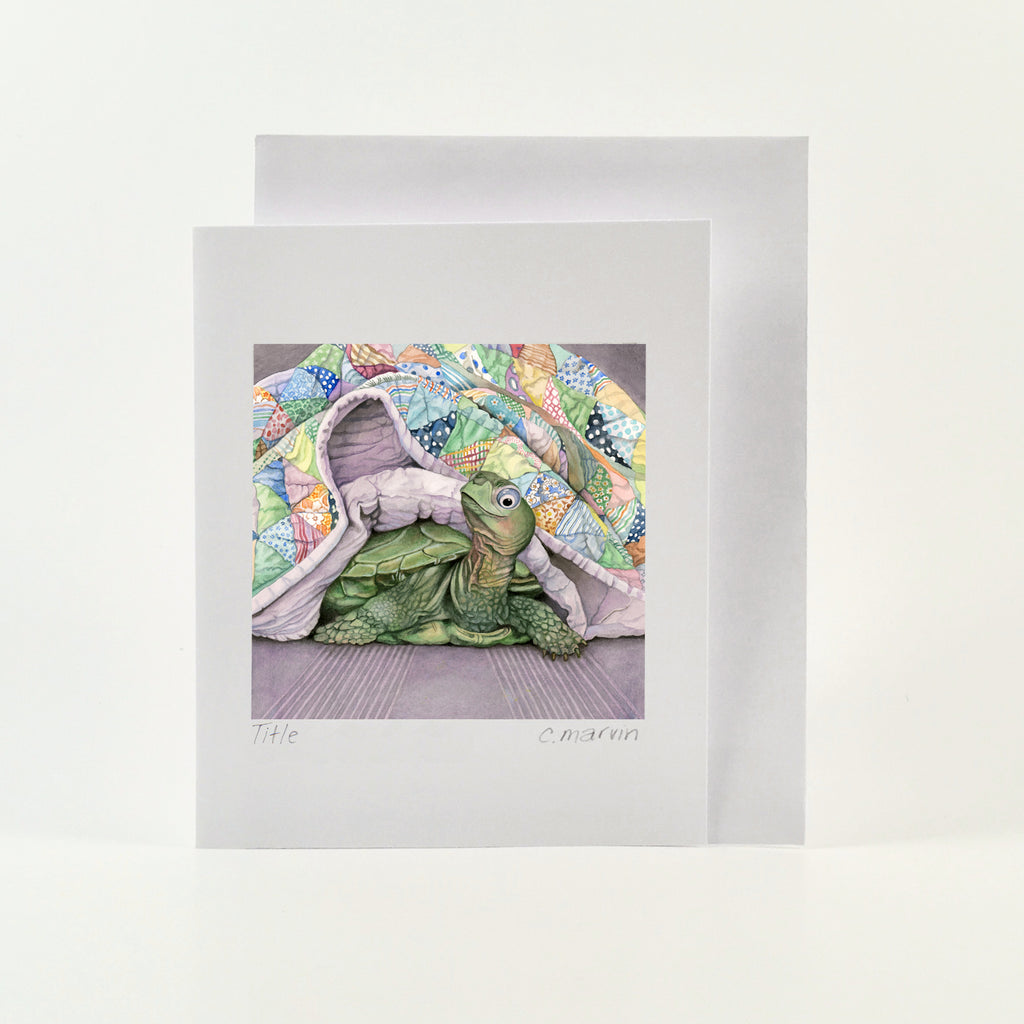 Napping Turtle - Wholesale Art Cards