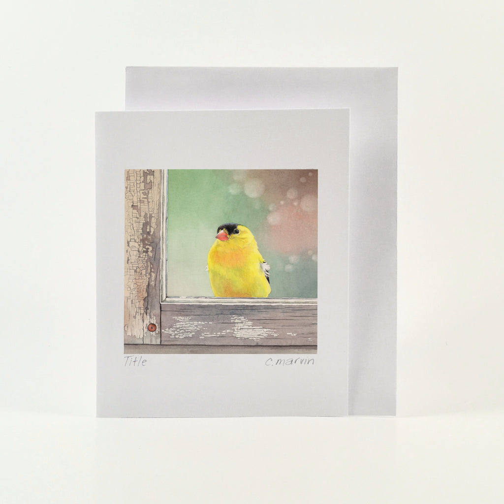 Window Finch - Wholesale Art Cards