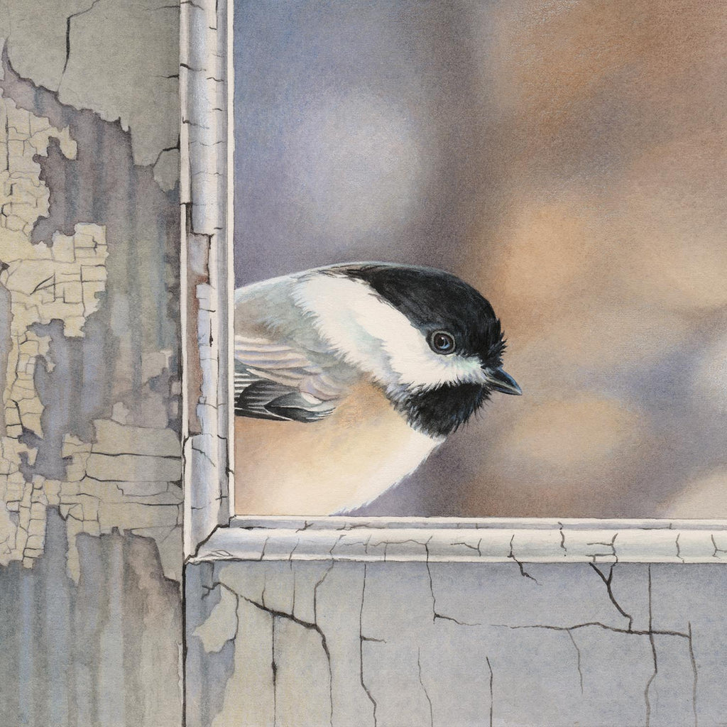 Chickadee Checks In - Gallery