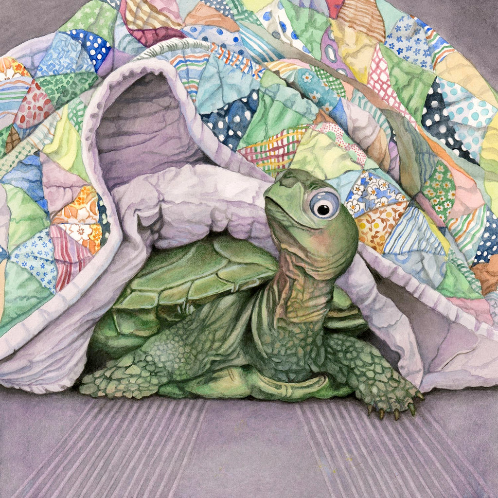 Napping Turtle