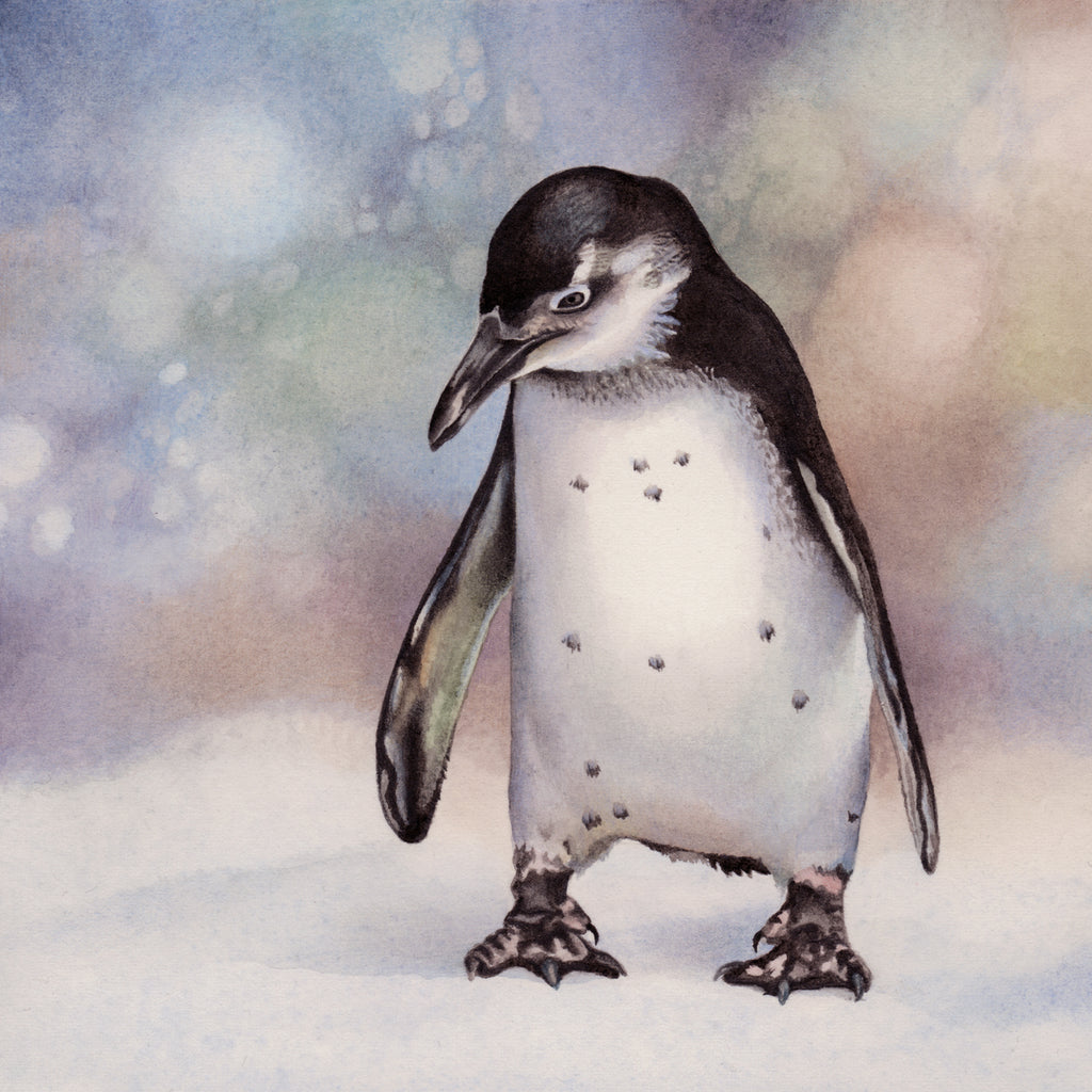 Pensive Penguin - Winter and Christmas - Gallery