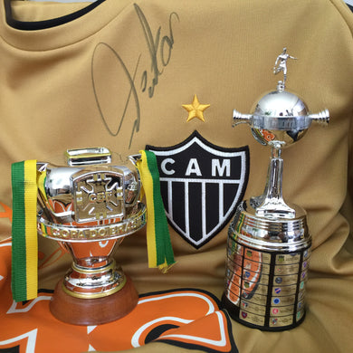 Combo Galo - Libertadores 2013 + Copa do Brasil 2014 + Caixa Display