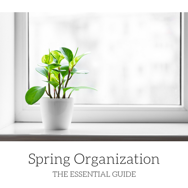 The Essential Guide to Spring Organization