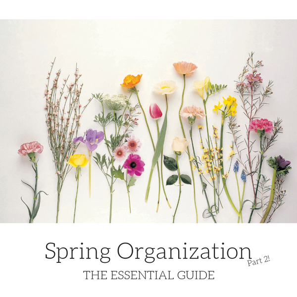 The Essential Guide to Spring Organization: Part 2