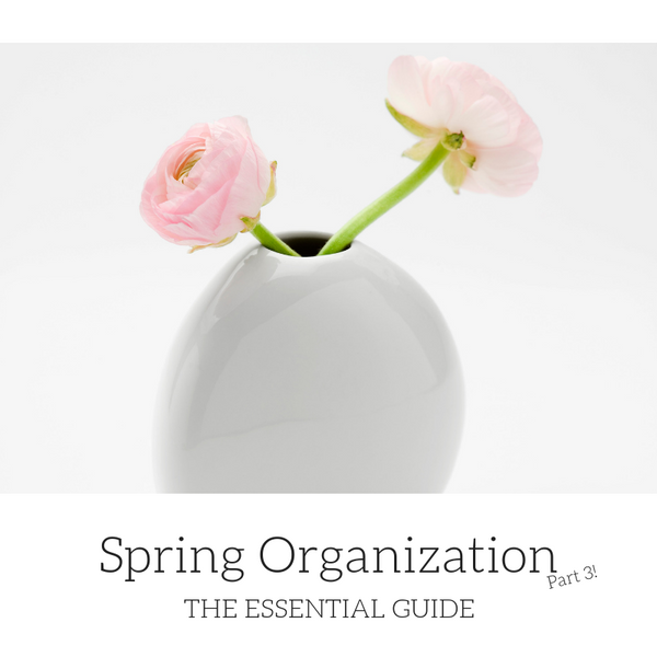 The Essential Guide to Spring Organization: Part 3