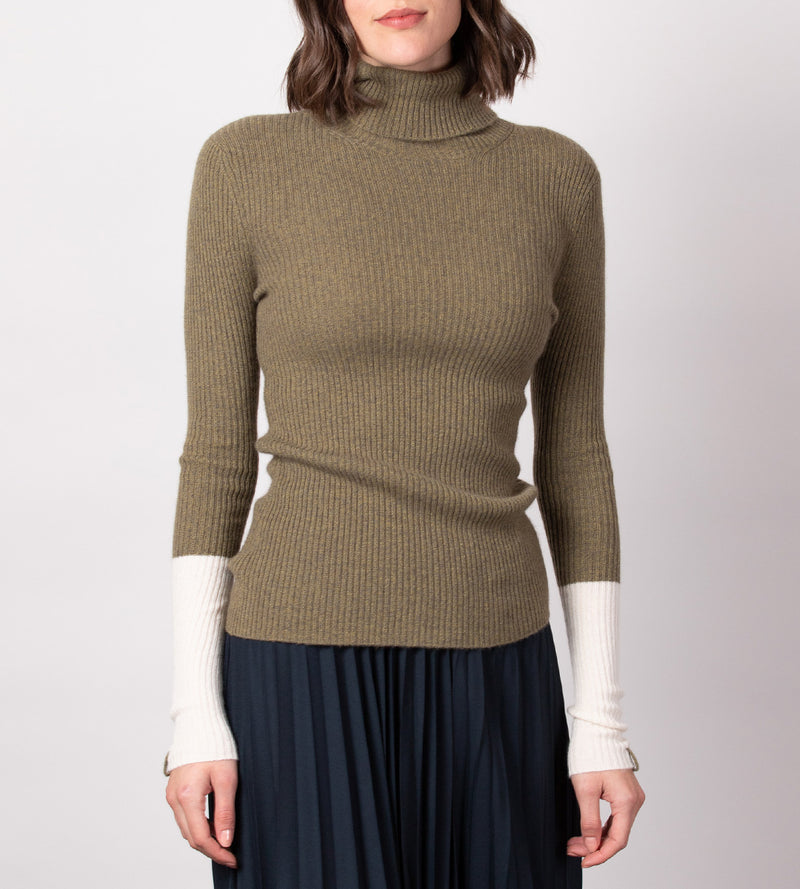 Fitted Sleeve Blocked Turtleneck
