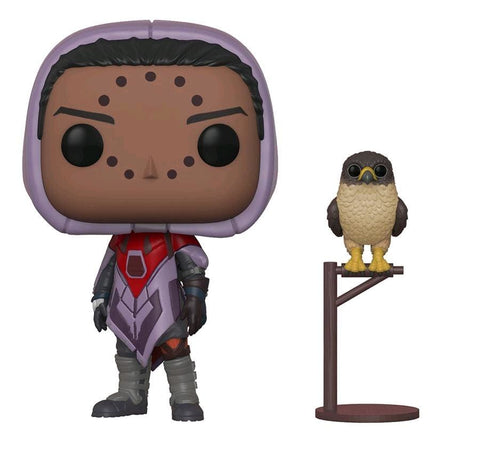 Destiny - Hawthorne w/Hawk Pop! - Pop! Vinyl