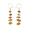40mm 14kt Gold Filled Natural Amber Kidney Wire Earrings