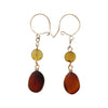 27mm 14kt Gold Filled Natural Amber Kidney Wire Earrings
