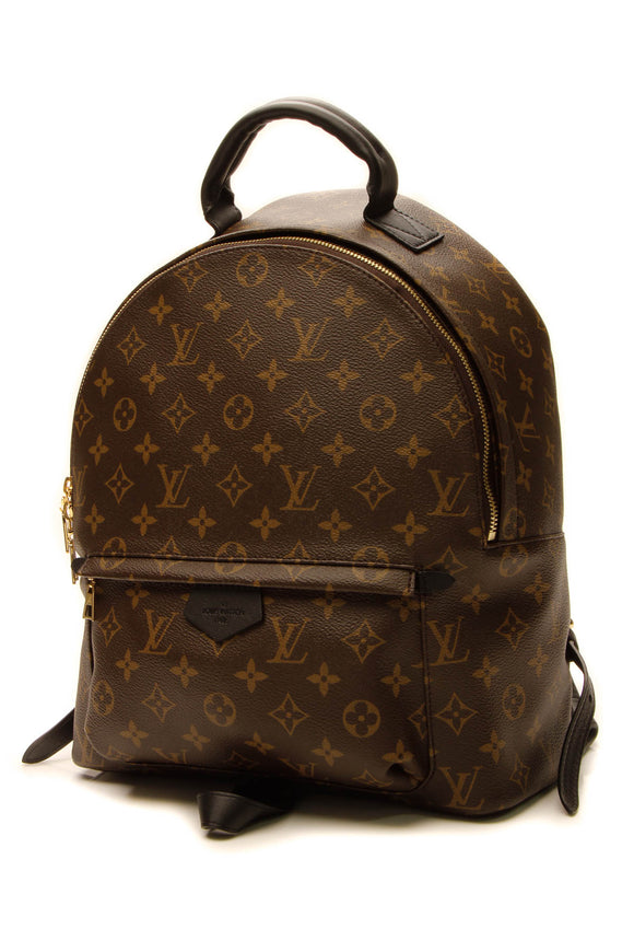 Louis Vuitton Palm Springs MM Backpack - Monogram