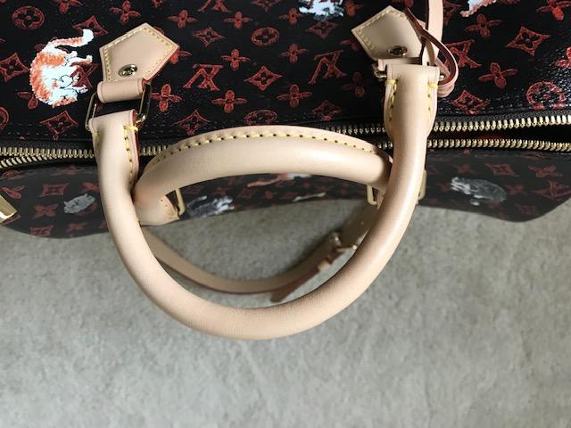 Louis Vuitton Catogram Speedy bag