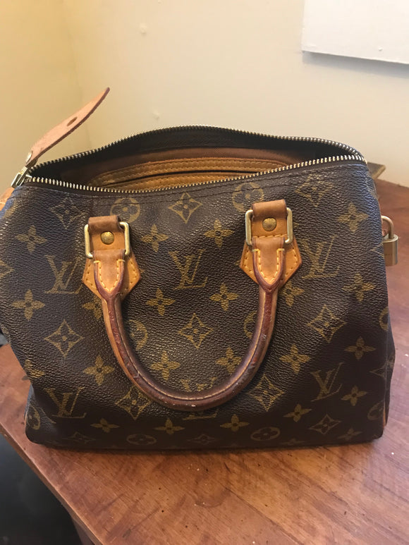 Louis Vuitton Speedy Monogram 25 bag