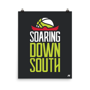 Soaring Down South Premium Matte Poster
