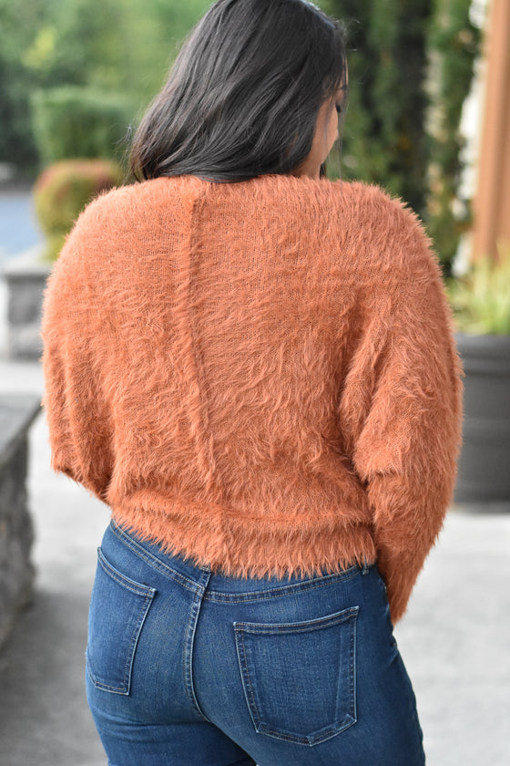 Ana Rust Fuzzy Sweater