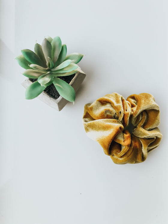 Siena Gold Velvet Scrunchie