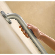 "MOEN HOME CARE PEENED 12"" GRAB BAR #LR8912P"