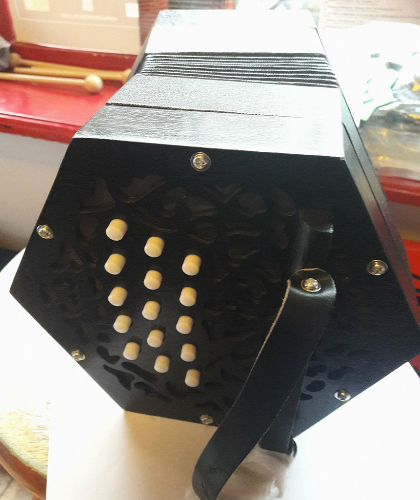 Beginner Anglo C/G Concertina