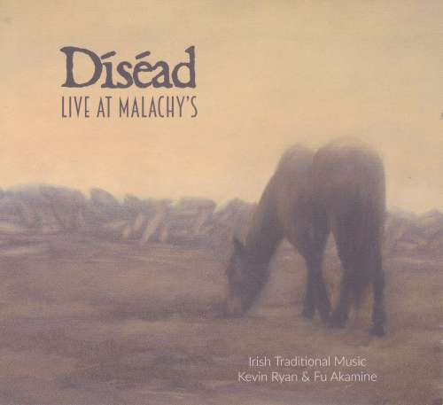 Kevin Ryan and Fu Akamine - Disead (duo)<h3>Live at Malachy's