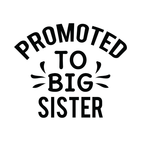 Promoted To Big Sister Sticker | *Sticker Only* | Sticker Decal