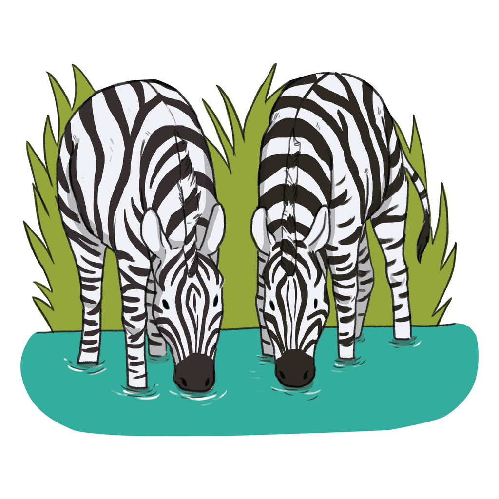 Zebra Safari Collection Wall Sticker