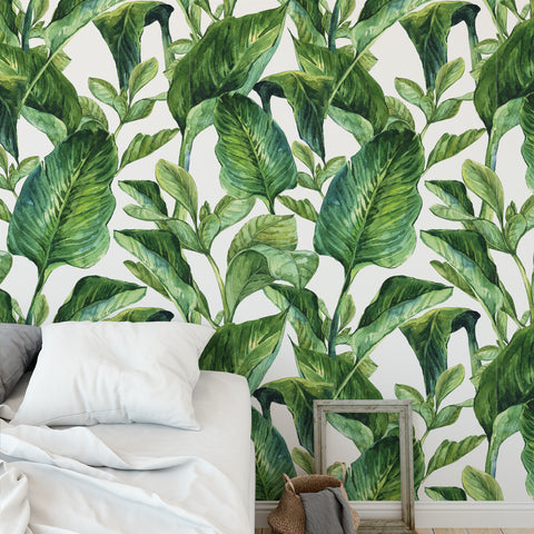 Banana Leaf Greenery Wallpaper Sample