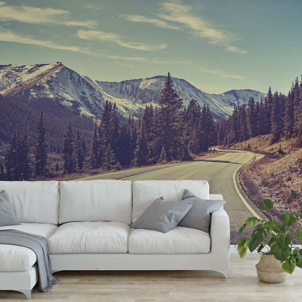 Mountain Trail Wall Mural