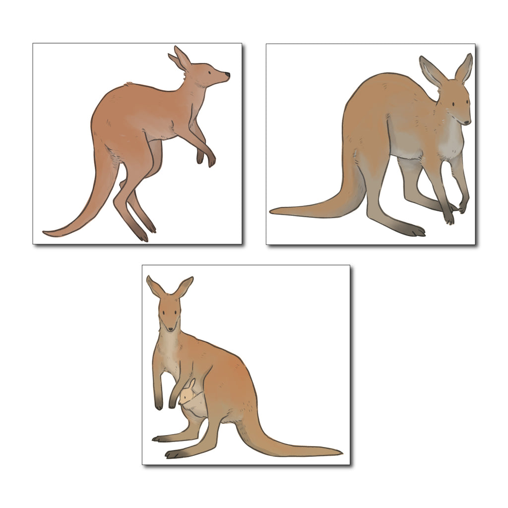 Kangaroo Set Australia Wall Sticker