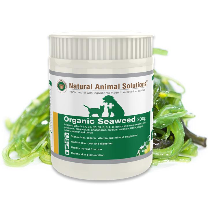 Natural Animal Solutions Organic Seaweed Supplement | Singpet.Com