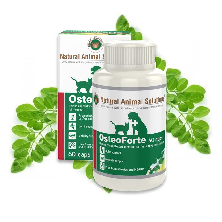 Natural Animal Solutions OsteoForte Joint Care Supplement For Dogs & Cats | Singpet.Com