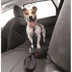 SECURITY CONECKT Leash + Safety Belt