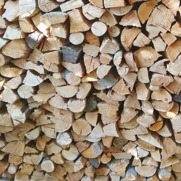 Blue Gum Bulk - Per 1000 Loose Pieces or more - Wood Kingz
