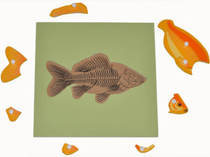 Fish Skeleton Puzzle - Wonder Eduquip