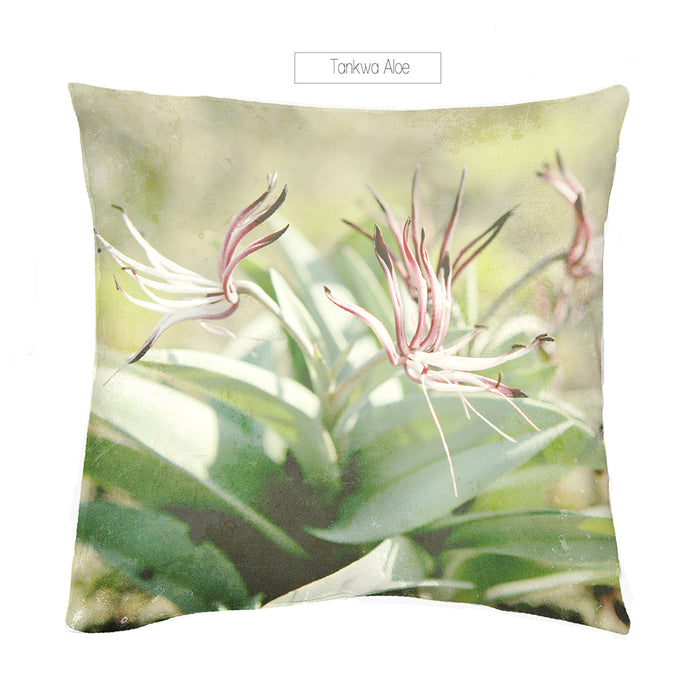 Tankwa Aloe Scatter Cushion