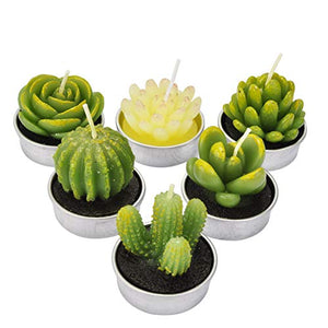 LA BELLEFÉE Cactus Tealight Candle Succulent Cactus Candle Gift Set Handmade Delicate Smokeless Cute Green Plant for Party Wedding Spa Home Decoration Gifts 6 Packs Gift