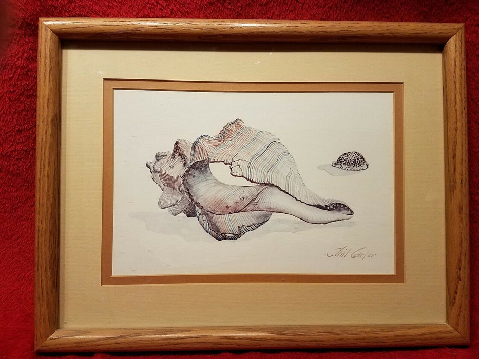 Clint Carter Conch Shell on Beach Matted and Framed Print