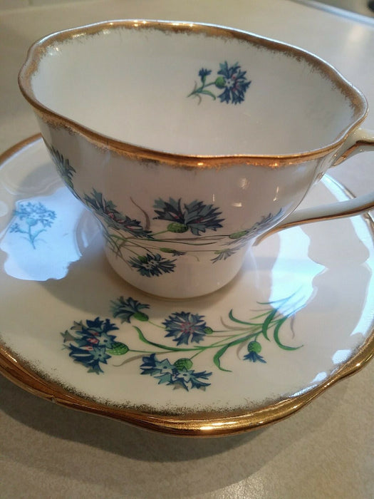 Rosina Bone China Tea Cup & Saucer made in England Blue and Floral Pattern