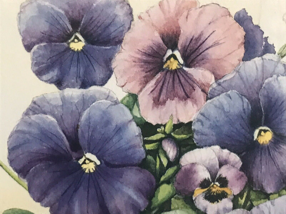 "Connie Bieber Signed ""Kitchen Pansies"" Artist's Proof 79/800 framed 14.5 x 11.25"
