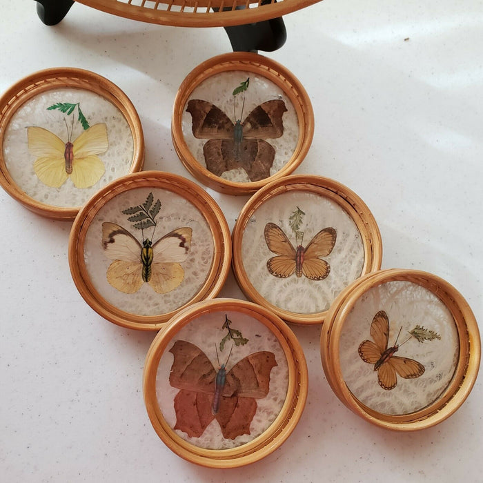 Vintage Butterfly Wing Art Inlaid Serving Tray Glass Cover Bamboo 6 coasters