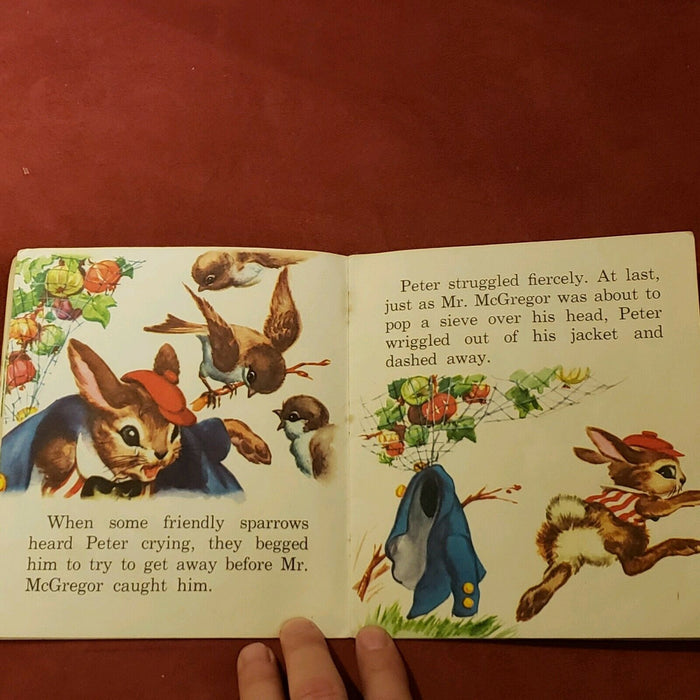 Rare Vintage 1955 Whitman Publishing Peter Rabbit - Pamphlet Style Booklet