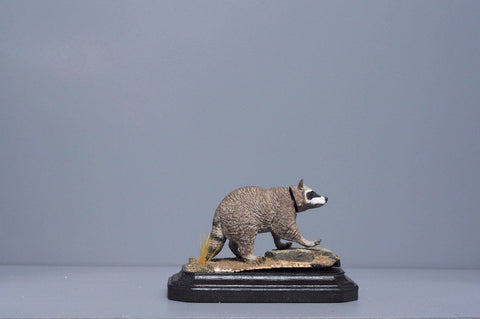 The Raccoon from The River