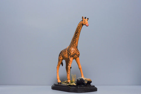 The Giraffe from The River