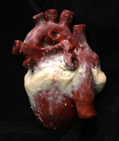 Fake Prosthetic Silicone Heart