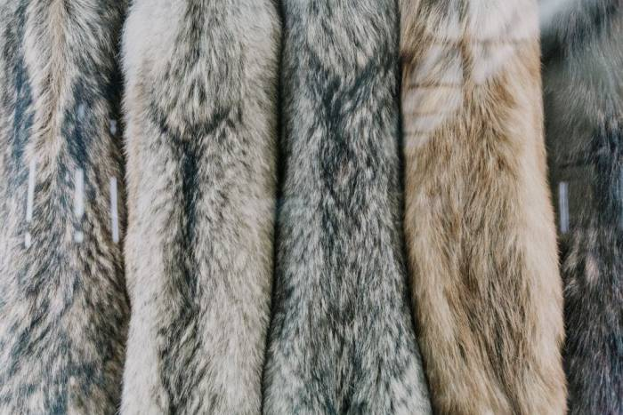 fur clothes collection
