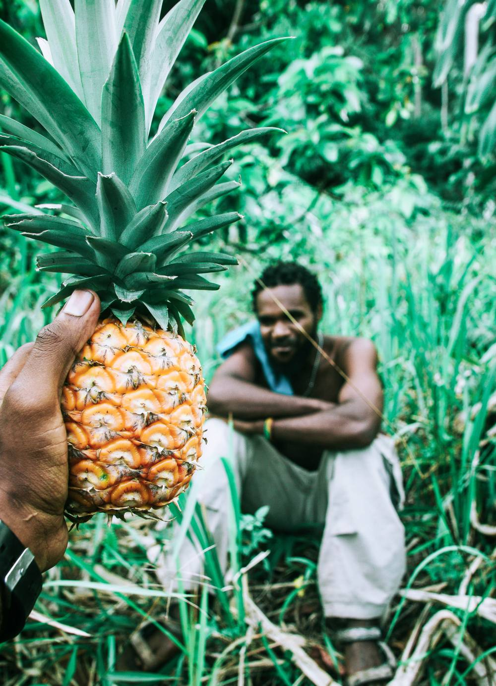 pinatex pineapple leather sustainable farming
