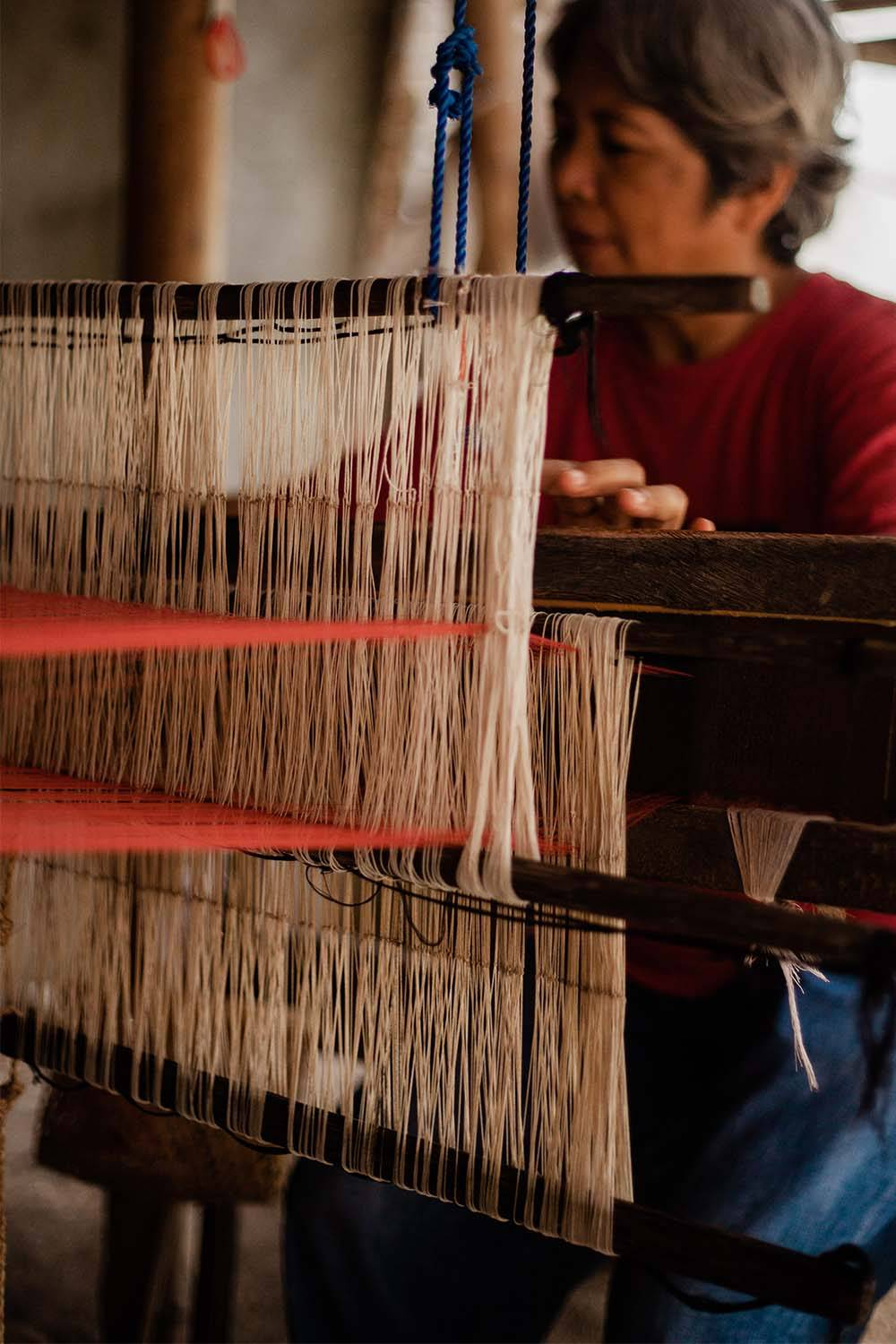 abaca cultivation fabric manufacturing woven