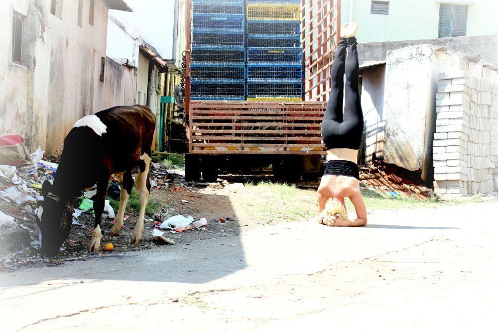 headstand ashtanga yoga benefits