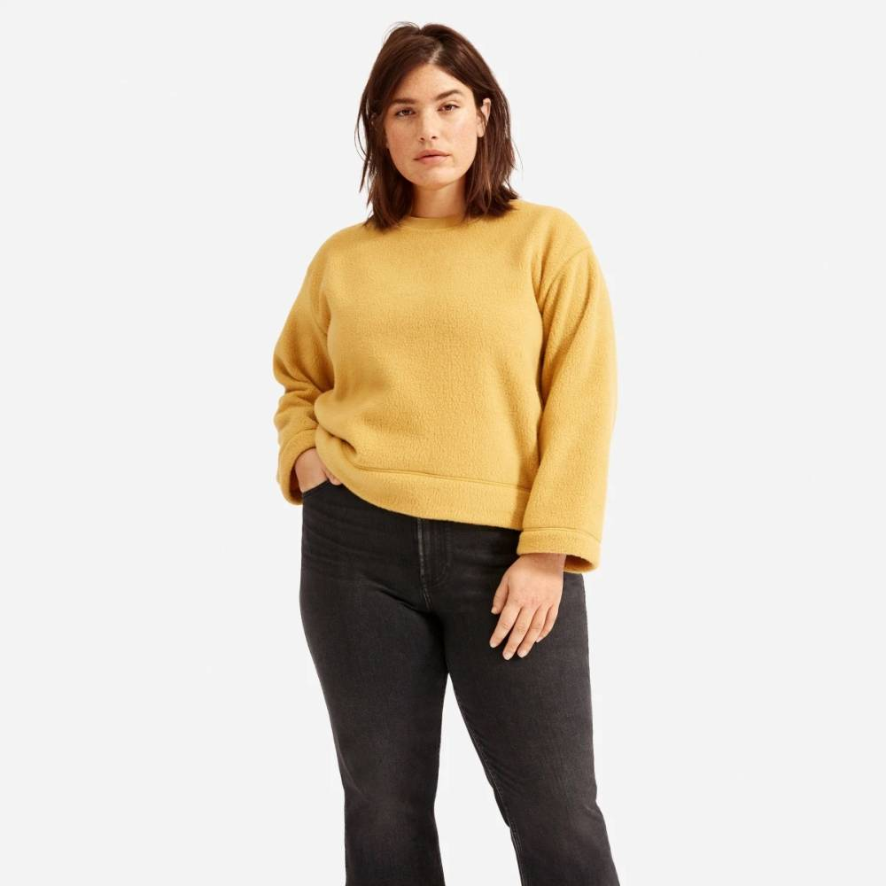 everlane stylish women winter jumper