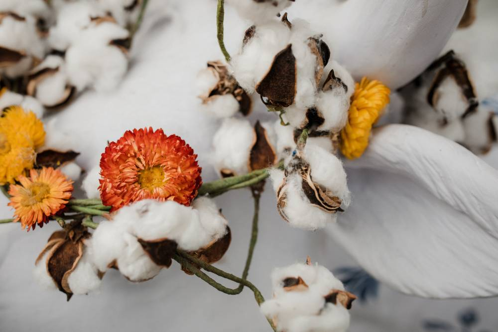 organic cotton OCS certification