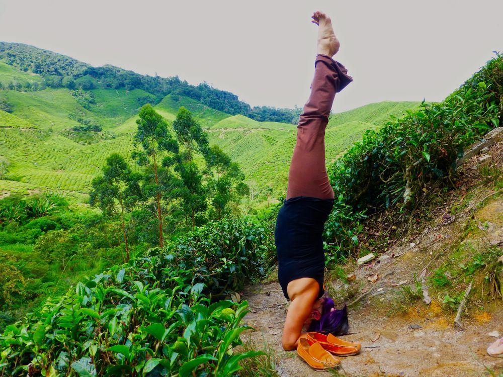 yoga challenge poses headstand hard