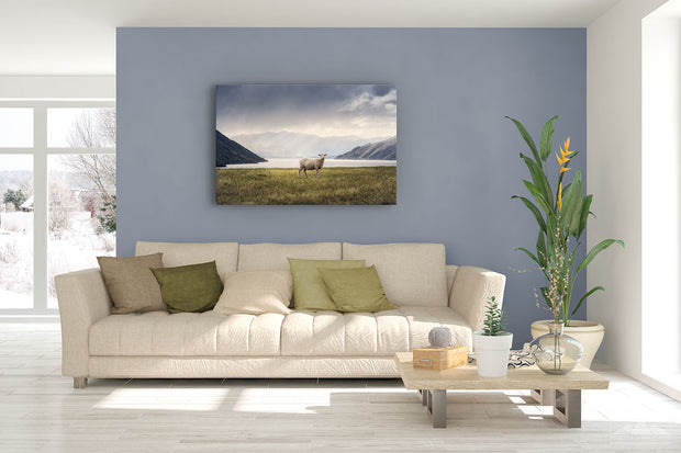 Photo canvas on living room wall of New Zealand landscape photo of a sheep by a lake